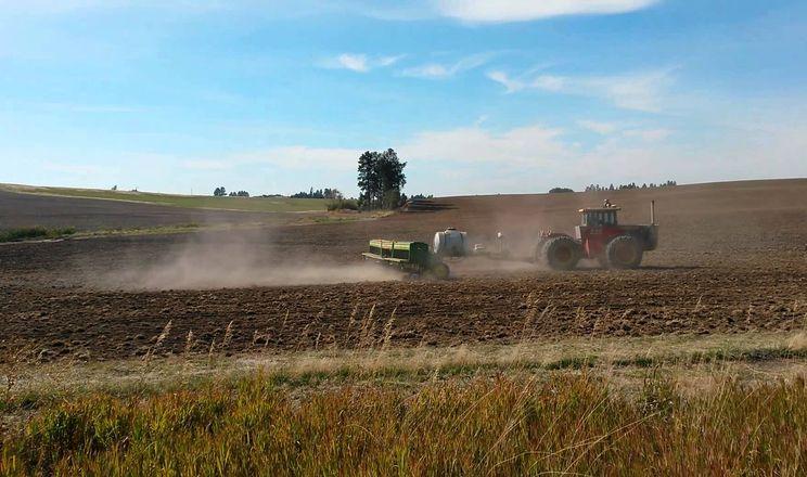 У східних та південних  областях зволоження ґрунту лишається недостатнім для сівби озимини