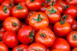 Tепличні томати в Україні майже на чверть дорожчі, ніж торік