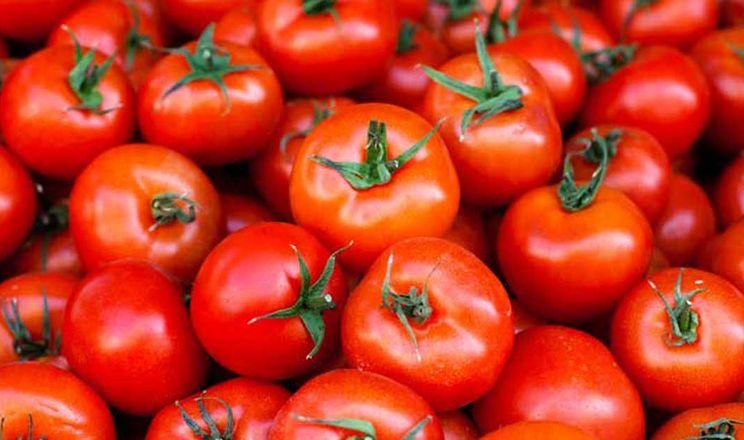 У Вінницькій області встановлять пам'ятник томату