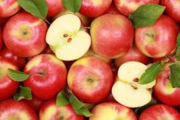 Експортних яблук не вистачає, – експерт