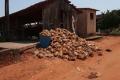 Через спеку у Бразилії загинуло понад 1 млн несучок