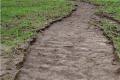 В умовах зменшення водоутримувальної здатності ґрунту слід удосконалювати його структуру