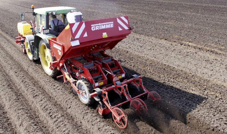 Картопля, висаджена на змінній відстані, дала на 90% більший урожай