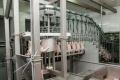 DG SANTE розпочав аудит системи держконтролю за виробництвом м'яса птиці в Україні