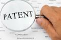 «Сингента» отримала патент на спосіб виявлення та кількісного визначення одного з фітопатогенів кукурудзи