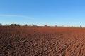 «Захід Агропром» поступово зменшує інтенсивність обробітку ґрунту