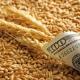 Експорт української пшениці досягнув майже 14 млн тонн