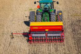 Оптимальна норма висіву пшениці залежить від уміння агронома передбачити польову схожість