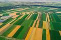 Українські аграрії з 2022 року отримають доступ до високопродуктивних мультиспектральних супутникових знімків
