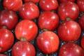 Яблука дорожчають, але імпорт не збільшується