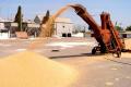Конкуренція між елеваторами посилюється на тлі скорочення валового збору зерна