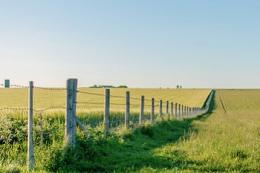 Одноосібники, які власноруч обробляють землю, мають задекларувати доходи