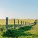 Уряд затвердив постанову про передачу земель у комунальну власність ОТГ