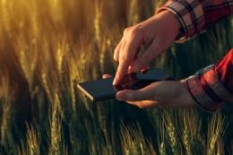 Представникам агробізнесу розкажуть про найуспішніші практики впровадження інноваційних агротехнологічних рішень