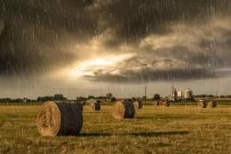 У східних та північних областях сьогодні можливий дощ