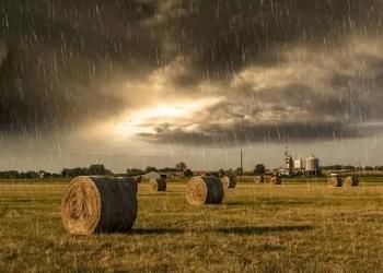 Дощитиме сьогодні майже у всіх областях України