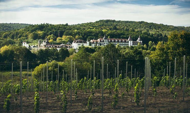 Château Edem почав вирощувати виноград для ігристих вин