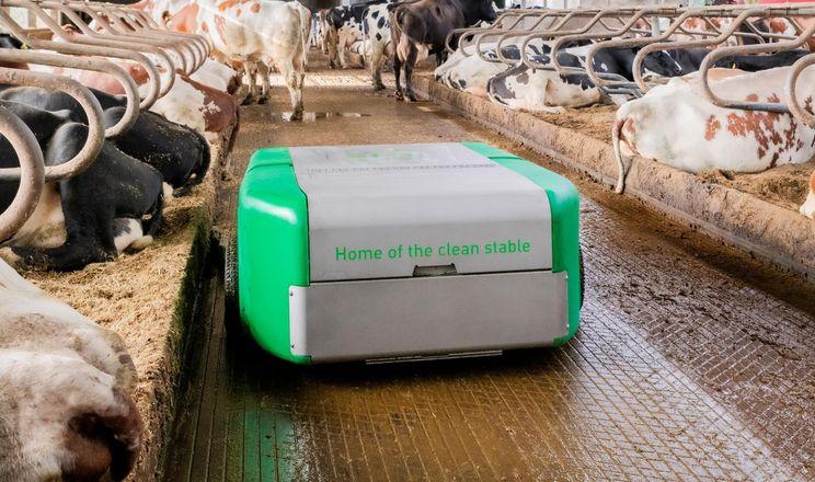 JOZ представив роботів для прибирання корівника