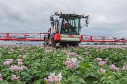 Фермер розповів про схему захисту картоплі