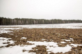 На сході, в центрі та на півночі України – мокрий сніг з дощем