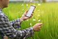 ADM шукає партнерів для ліцензування інноваційної технології оцінки врожаю