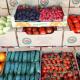 Кооператив на Луганщині будуватиме овочевий хаб