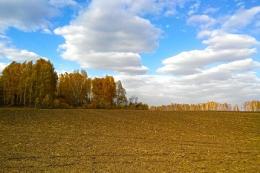 Сьогодні в Україні до 20°C тепла