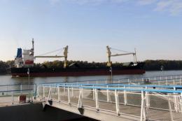 Ізмаїльський порт збільшив обсяги перевантаження олії та шроту соняшника
