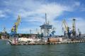 Маріупольський порт збільшує перевалку соняшникової олії