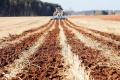 На Миколаївщині найбільші запаси вологи в посуху фіксували на полях із найтривалішим застосуванням strip-till