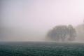 На всій території України, крім півночі, очікується сильний туман