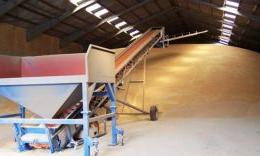Зернозберігання має перспективу лише як складова більшого бізнесу