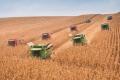 НІБУЛОН збирає кукурудзу з урожайністю 100 ц/га
