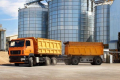 Крадія 60 тонн кукурудзи з елеватора засудили до 3-х років умовно