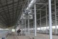 Агрофірма «Пісчанська» ввела в експлуатацію третій етап нового тваринницького комплексу
