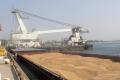 У січні-листопаді 2020 року морпорти перевалили понад 44 млн  тонн зернових вантажів
