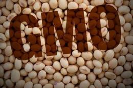 На Волині почали виявляти ГМО методом ПЛР у режимі реального часу