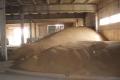 На початку грудня на елеваторах зберігалося 4,2 млн тонн пшениці