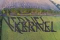 Три HR-проєкти «Кернел» отримали міжнародні премії