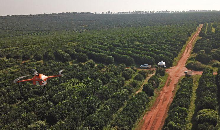 Kubota інвестує в стартап моніторингу дерев