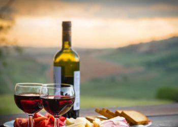 Продаж землі дасть поштовх виноградарству і виноробству, – Іван Плачков
