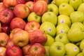 Експерт попередив про можливість падіння цін на яблука