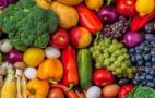 Створюється Національний каталог українських експортерів харчової органічної продукції