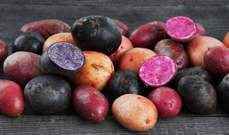 Кольорова картопля робить безглютеновий хліб кориснішим