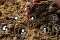 МХП вдосконалює процес компостування