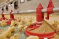 Володимир-Волинська птахофабрика знайшла ефективні технології для вирощування птиці без антибіотиків