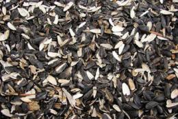 «Укроліяпродукт» розпочав виготовляти біопаливо з гранульованого лушпиння