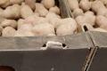 В супермаркетах продають литовську картоплю