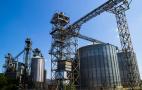 Термінал «Максігрейн-Юкрейн» перевалив майже 310 тис. тонн зерна