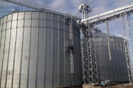 Українець через кіпрську компанію придбає контрольний пакет акцій «Новгород-Сіверського елеватора»